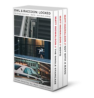 Owl & Raccoon: Locked - three tricky police mysteries book promotion Matt Ingwalson
