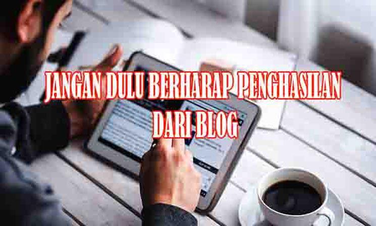 Jangan Berharap Penghasilan Dari Blog Saat Baru Ngeblog