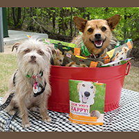 Look Who's Happy dog treat giveaway