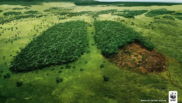 ejemplo de publicidad social medioambiental