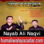 http://www.humaliwalayazadar.com/2015/10/nayab-ali-naqvi-nohay-2016.html