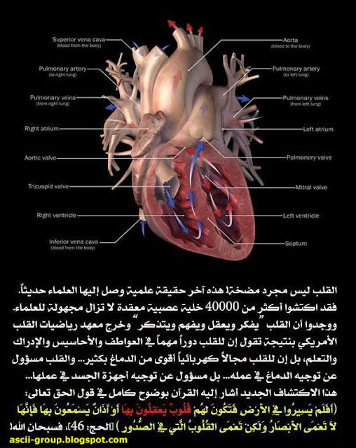 أسرار الإعجاز العلمى فى القرآن والسنة Secrets of Scientific Miracles in the Quran and Sunnah