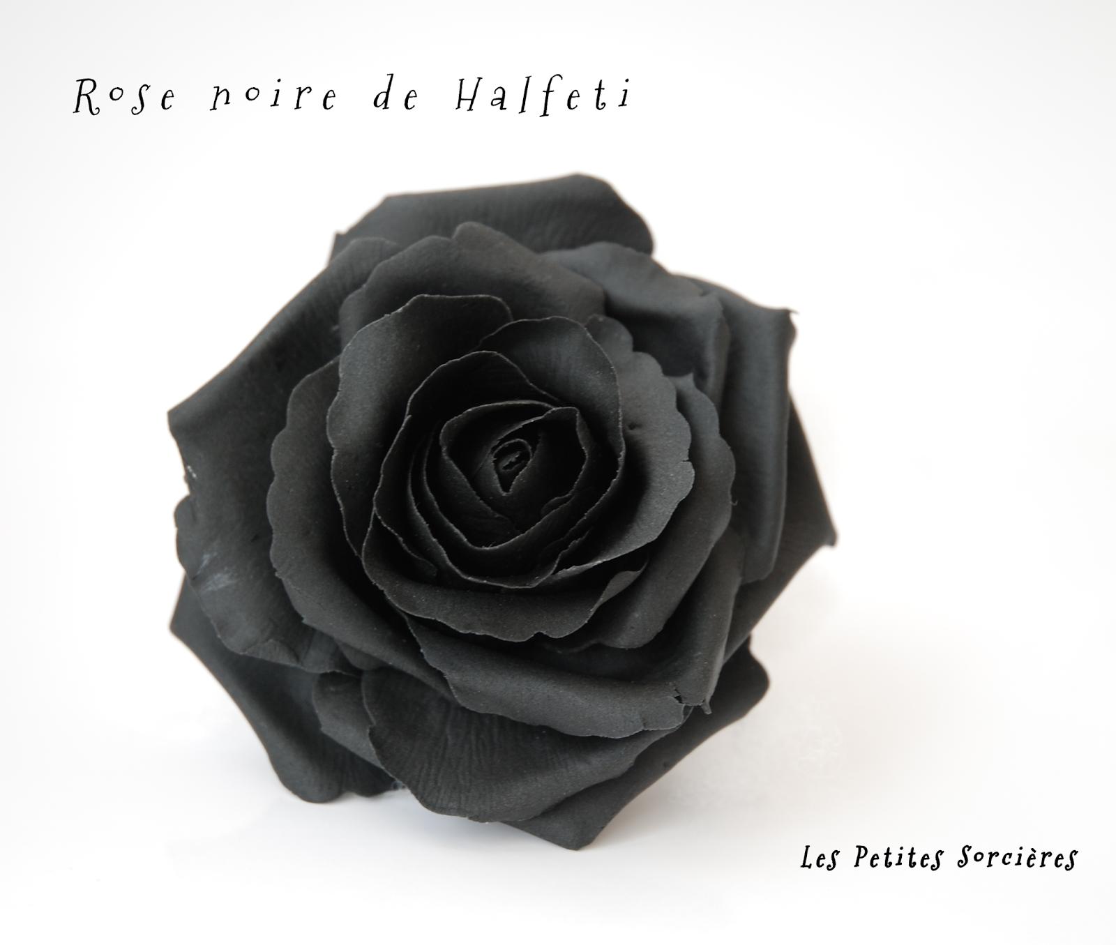 Les Petites Sorcieres Rose Noire De Halfeti