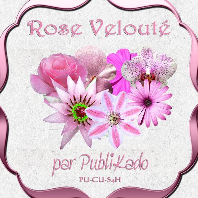 Rose Velouté
