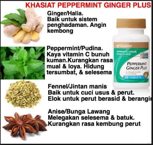 Khasiat dan Kandungan Peppermint Ginger Plus Shaklee