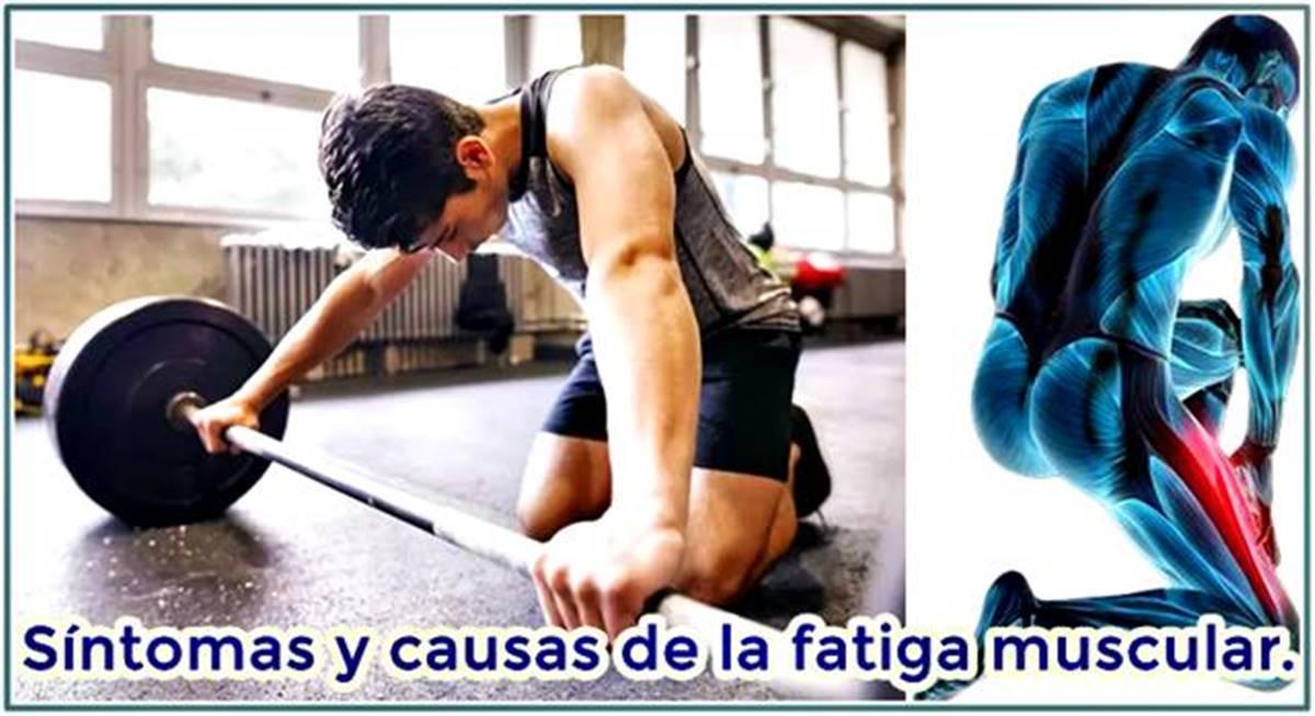 íntomas de la fatiga muscular y cómo evitarlos