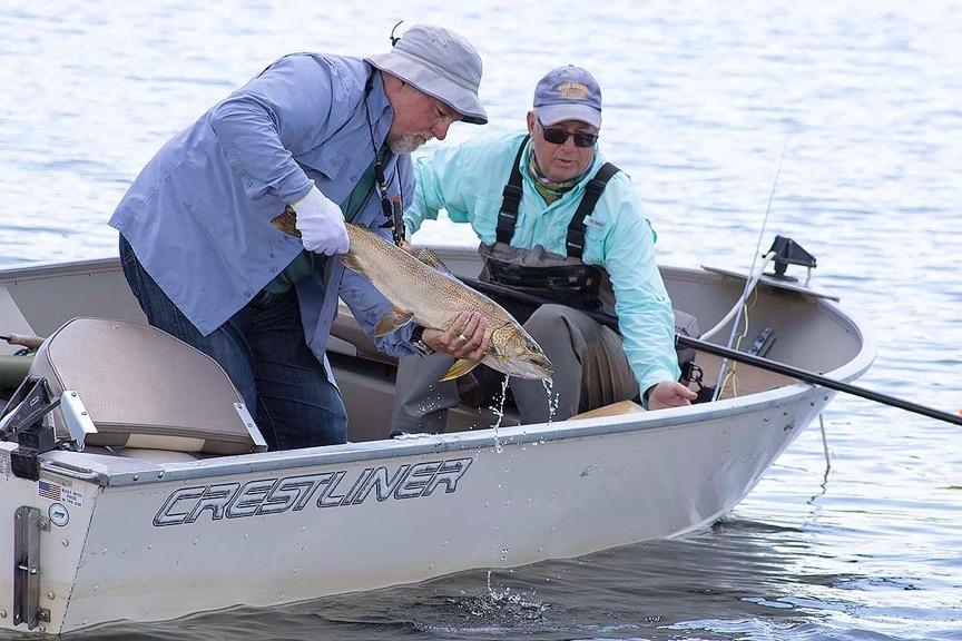 utah tiger muskie   Gil Fly Fishing