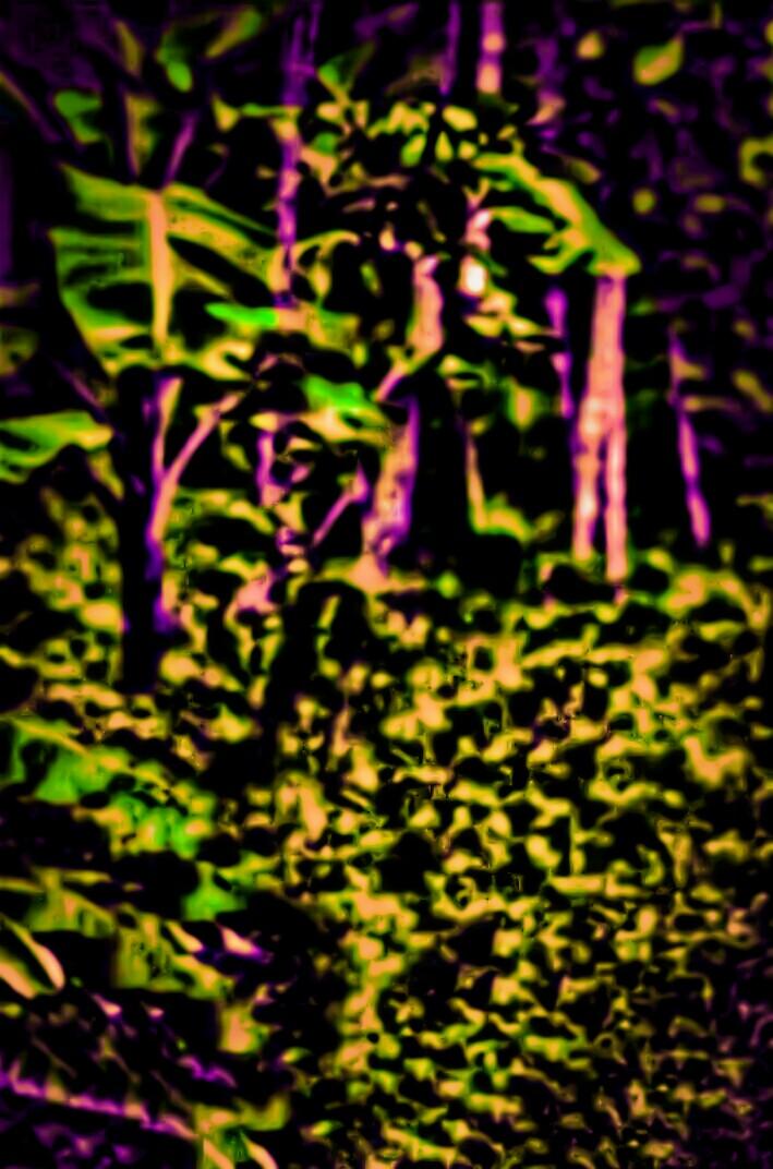Amankumar Backgroundhd backgroundbackground for editingpicsart