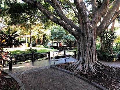 Brisbane Australia Park