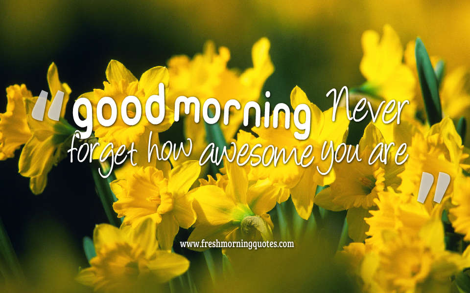 Good morning Never forget how awesome you are