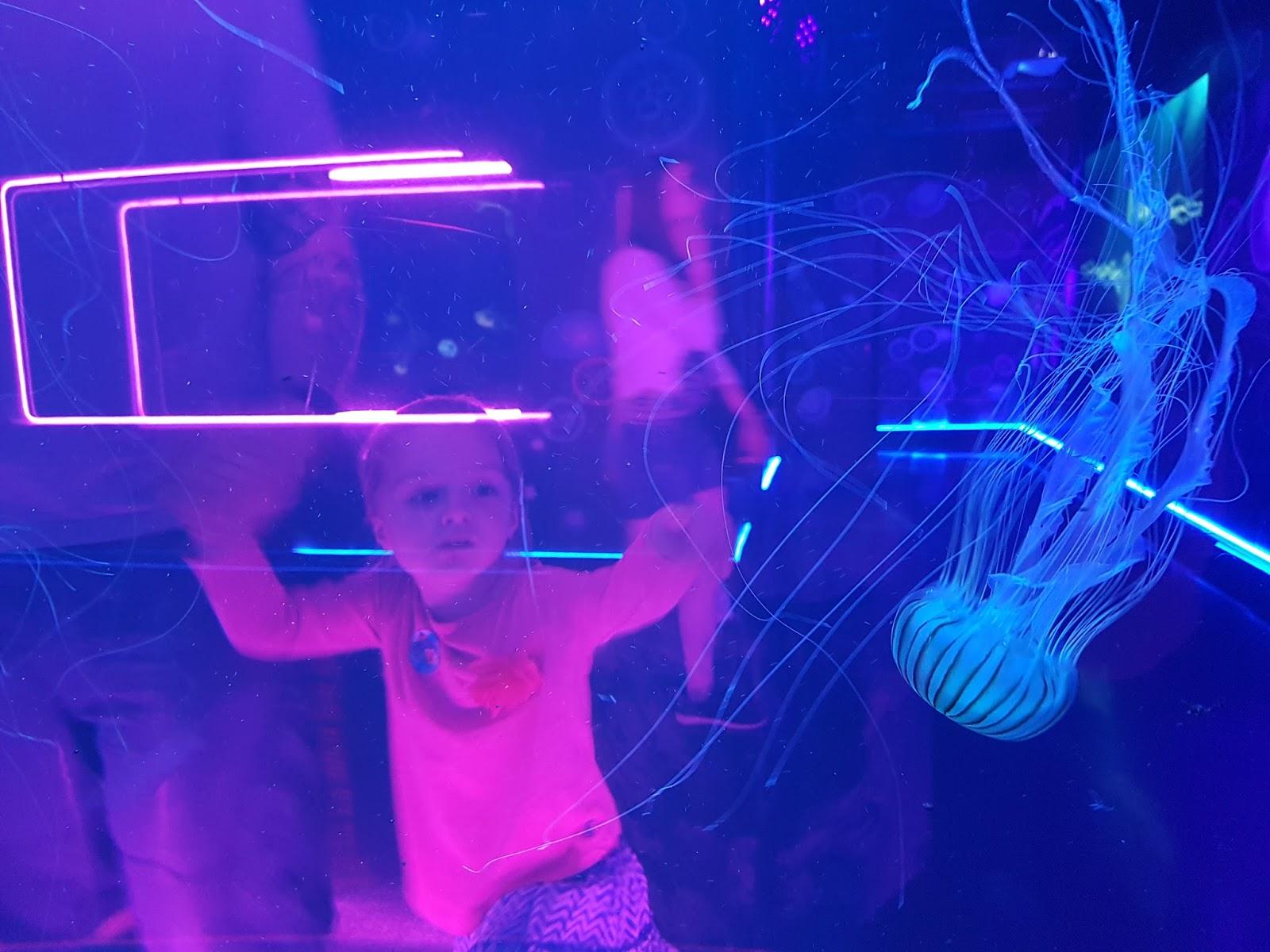girl watching jellyfish