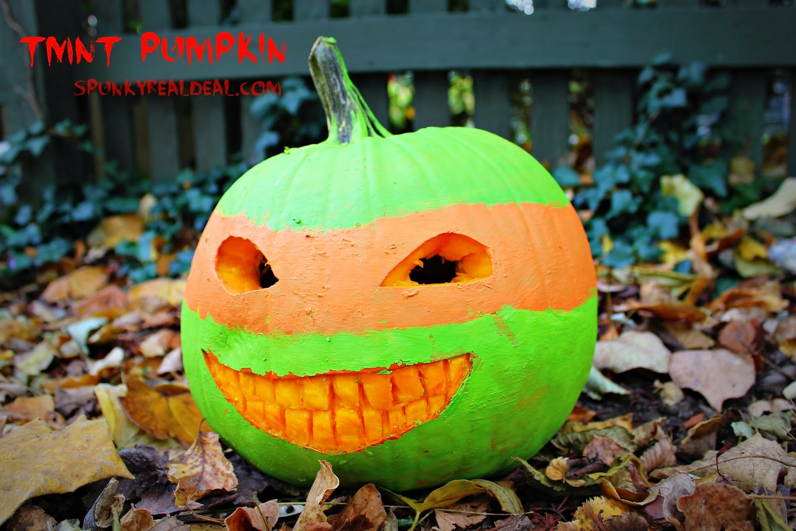 Teenage Mutant Ninja Turtle Pumpkin