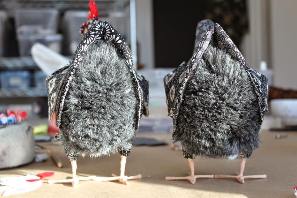 Pet Chicken Ranch