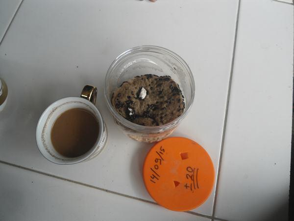 makan semut jepang