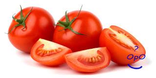 Opo - Manfaat buah tomat untuk kesehatan