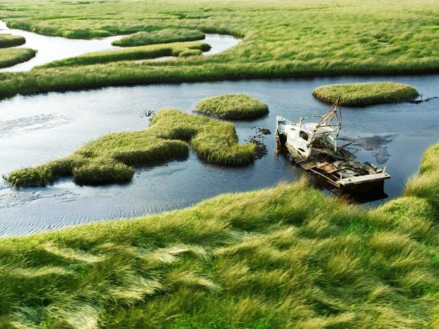 Everglades National Park Florida