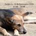 Ιωάννινα:Ημερίδα Με Θέμα Τη Διαχείριση Των Αδέσποτων Ζώων & Της Κακοποίησης Των Ζώων Συντροφιάς