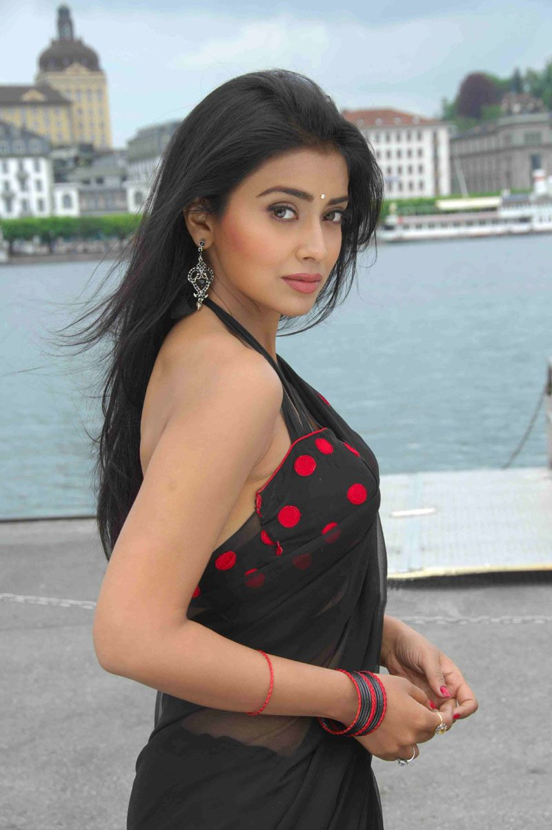 Indian Actress Shriya Saran Hot Black Saree Bikini Blouse -1148