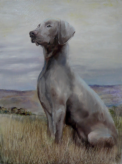 oil painting of a Weimaraner waiting for spring on Dartmoor