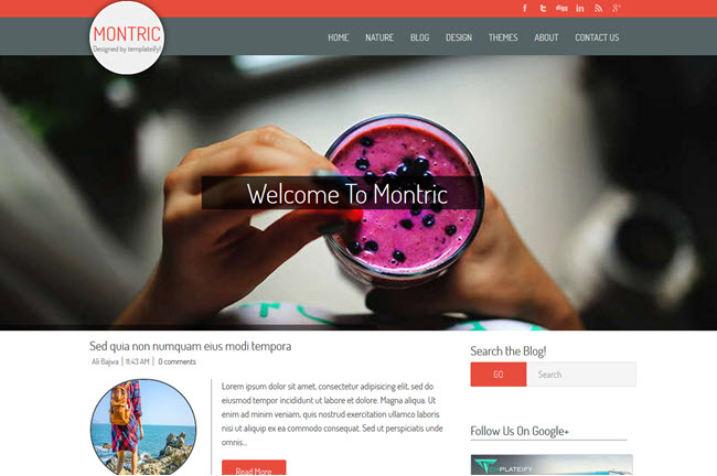 Montric - Magazine Blogger Template