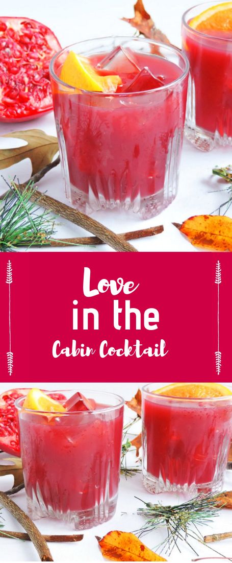 Love in the Cabin Cocktail #cocktailRecipe #drinks