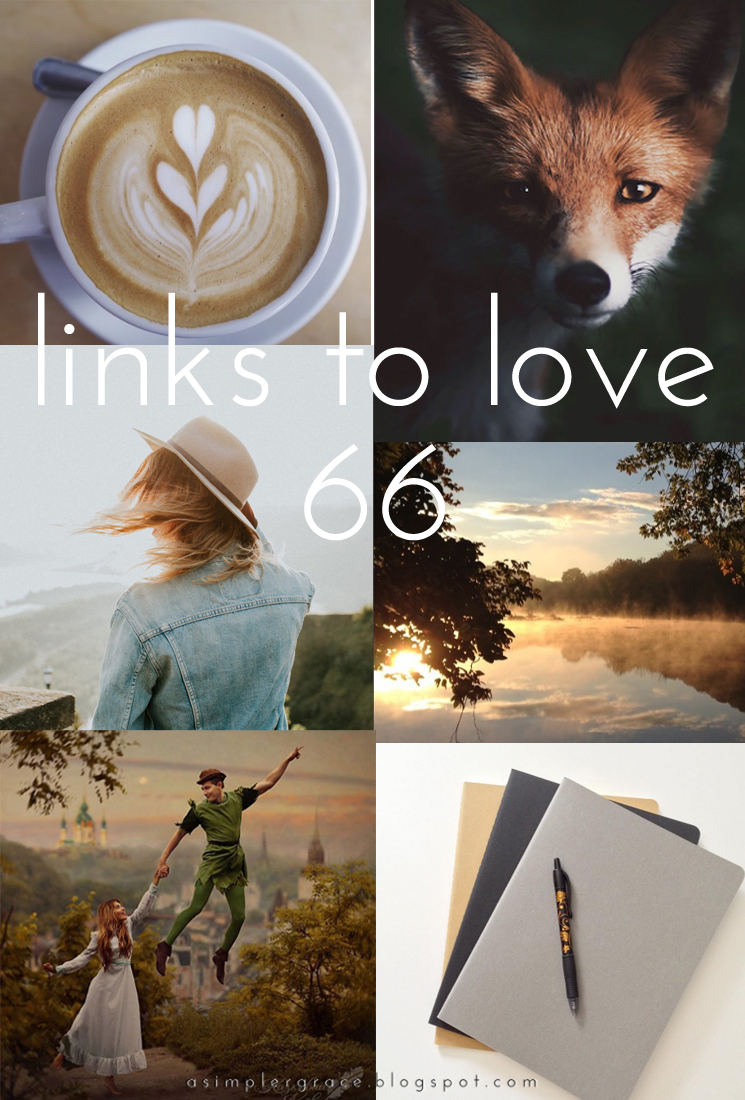 A post featuring my favorite reads from the week.  #linkstolove #fridayfavorites - Links to Love | 66 - A Simpler Grace