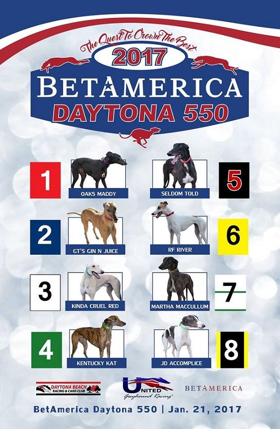 Greyhound Schedule Orlando To Daytona Beach