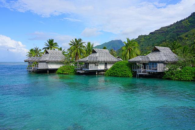 tahiti,take me to tahiti,kevin ayers - take me to tahiti lyrics,air tahiti,air tahiti nui,what to do in tahiti,the islands of tahiti,to,what to eat in tahiti,take me on vacation palette,tahiti (geographical feature),air tahiti nui los angeles to paris,sharks in tahiti,i love tahiti,#tahiti,mgx tahiti,tahiti boy,tahiti food,islands of tahiti,tahitian,air tahiti (airline),food in tahiti