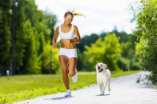 Ejercicio-mascota-perro-correr-estrés