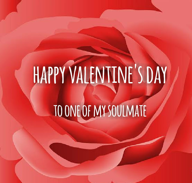 Happy Valentine's day 2019 Surprise gifts for your partner