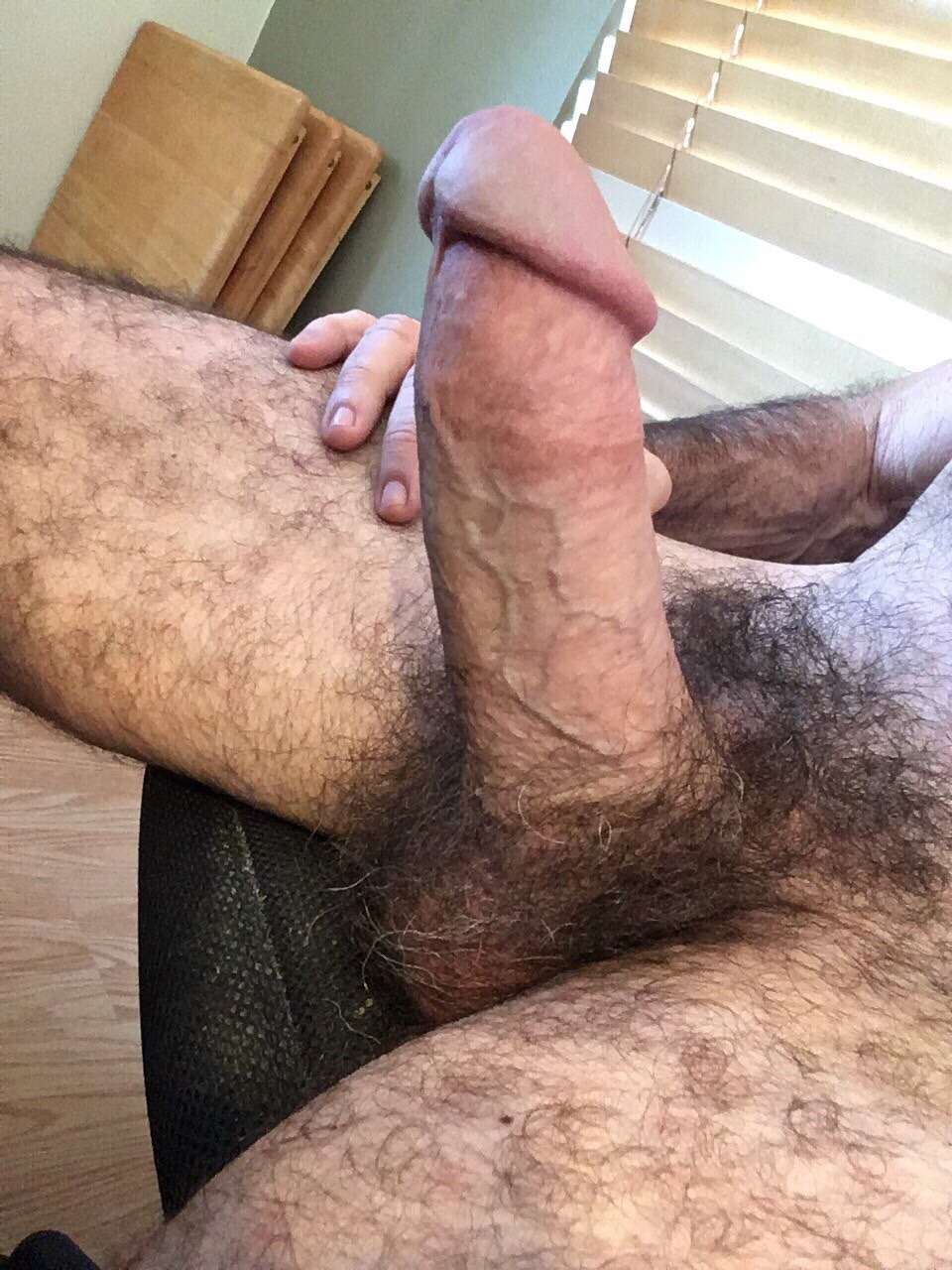 Erected Huge Cock And Hairy Balls