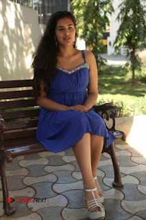 Actress Prasanna Stills in Blue Short Dress at Inkenti Nuvve Cheppu Movie Platinum Disc Function  0164.JPG