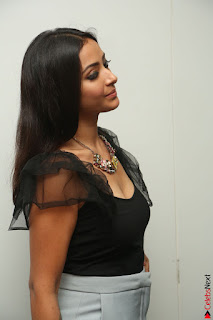 Swetha Basu in a Black Sleeveless Top Long Skirt at Mixture Potlam Movie Audio Launch 081.JPG