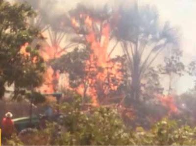 Incêndio atinge área de preservação de povoado no oeste da Bahia