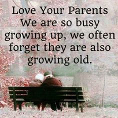 Quotes About Parental Love: Love your parents we are so buy growing up; we often forget they are also growing old.