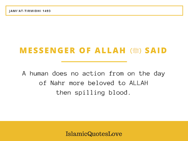 Messenger of ALLAH (ﷺ) Said: A human does no action from on the day of Nahr more beloved to ALLAH then spilling blood. On the Day of judgement, it will appear with its horns, and hair, and hooves, and indeed the blood will be accepted by ALLAH from where it is received before it even falls upon earth, so let your heart delight in it.
