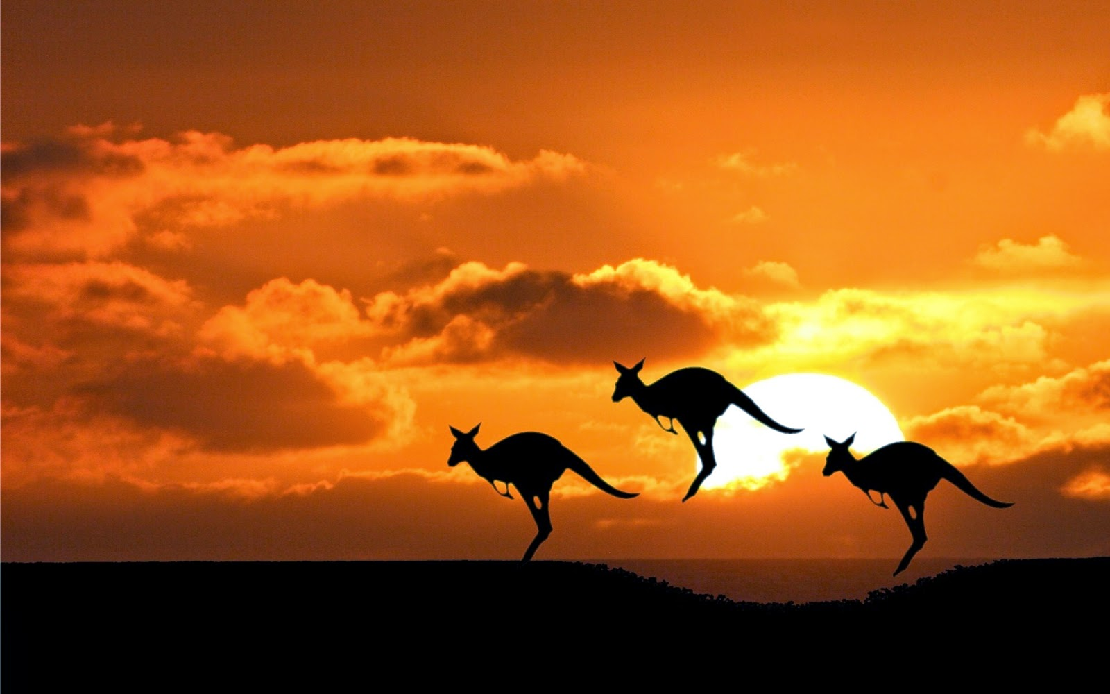 Offbeat Destinations In Australia