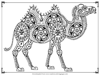free printable camel coloring pages for adults