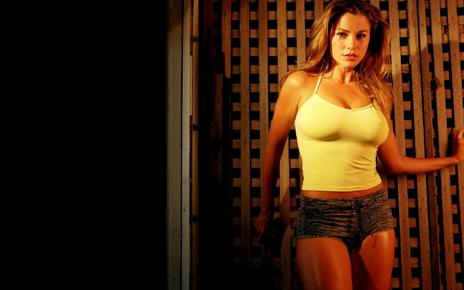 Sofia Vergara Soul Plane 30 43 Sofia Vergara Wallpaper In 2013 Full Hd Wallpapers