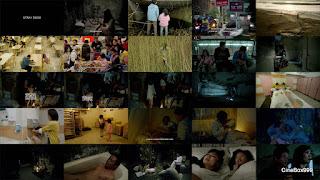 Бродячие псы / Jiao You / Stray Dogs. 2013.