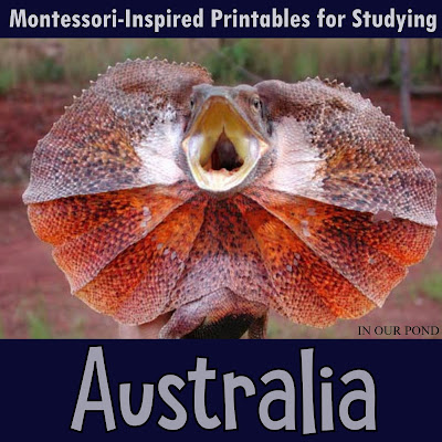 Montessori-Inspired Printables for Studying Australia //  In Our Pond