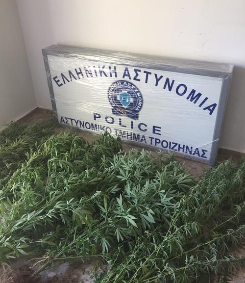 Με σύλληψη για καλλιέργεια κάνναβης ξεκίνησε την λειτουργία του το αστυνομικό τμήμα Τροιζηνίας