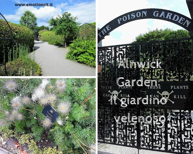 Viaggio in Inghilterra: visitare giardini di piante velenose