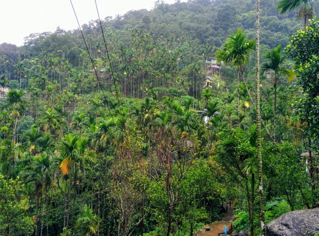 A closer look at the green village called Nongriat, Meghalaya
