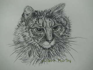 pet sketch of a cat