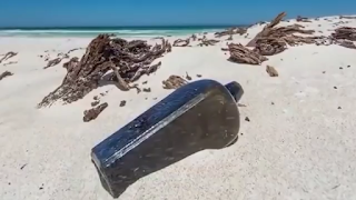 Five strange things found in the sea