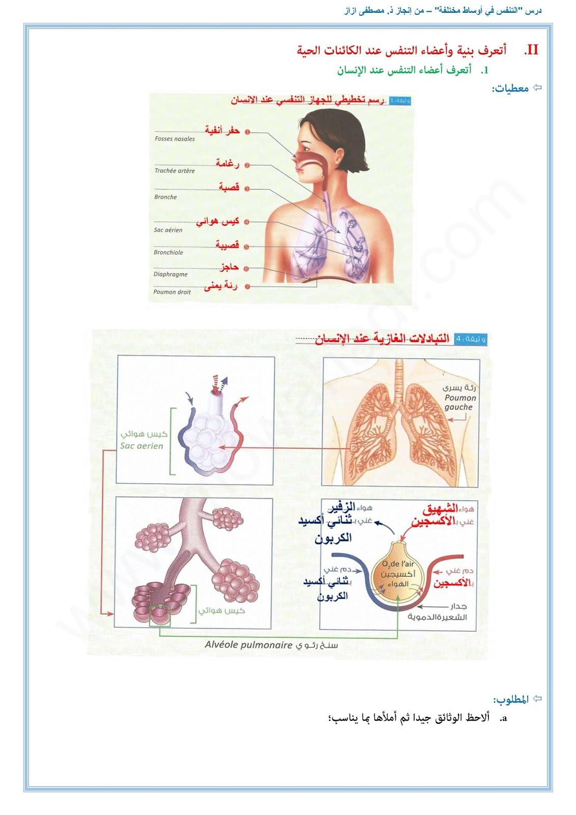 التنفس في أوساط مختلفة4
