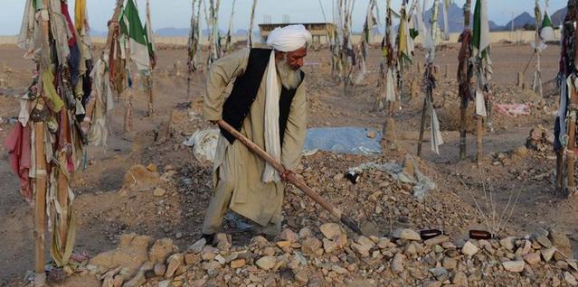 Pemimpin Taliban Serukan Pentingnya Menanaman Pohon untuk Kebaikan Dunia