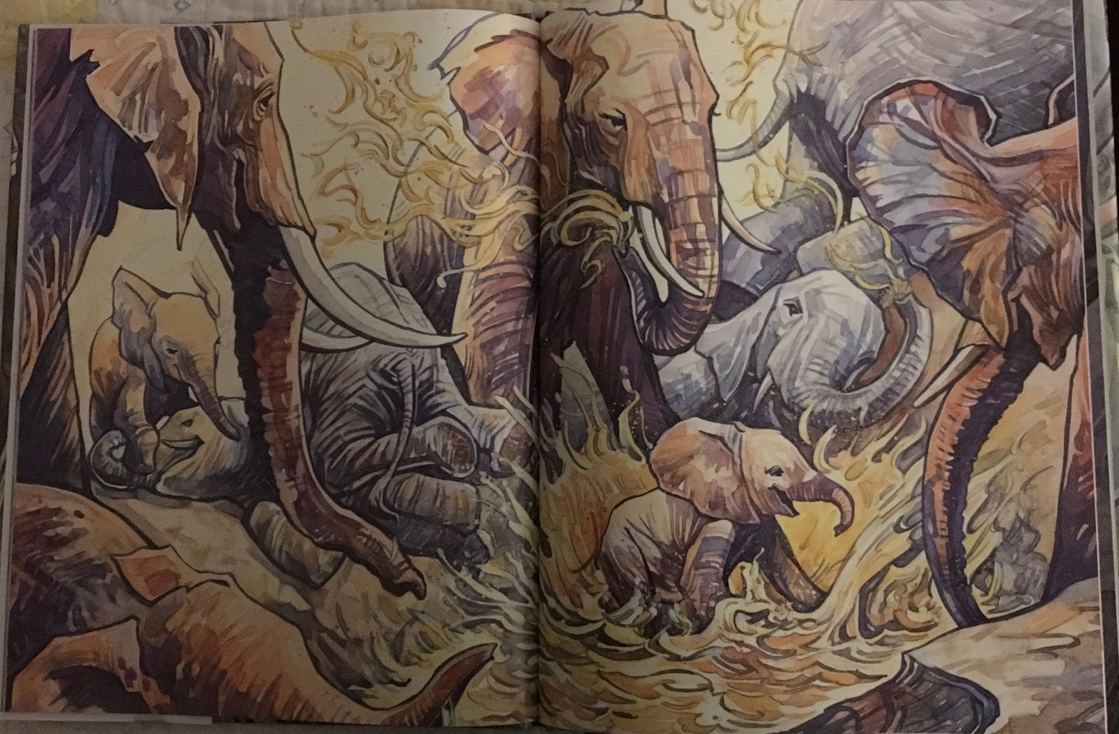teacherdance two amazing books about animals