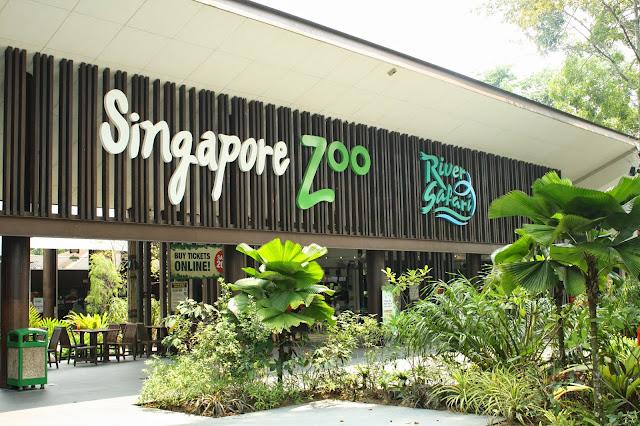 entrada_singapur_zoo